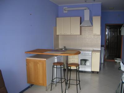 совсем бюджетный вариант кухни-студии